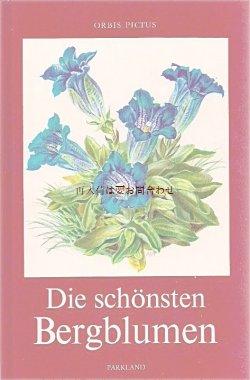 画像1:  楽しい古本★ 美しい 山のお花の本  ボタニカル アート  高山植物   カラー イラスト