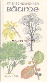 楽しい古本★ 庭 野原 森の木の本  図鑑 ナチュラル ガイド