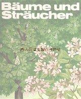 楽しい古本★ 木と低木の本   80年代植物図鑑  イラストの素敵な本