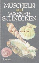 楽しい古本☆ 二枚貝と水辺の巻貝 爽やかな貝の図鑑 80年代