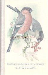 楽しい古本 洋書★ ナチュラル  70年代 小鳥 鳴鳥 の本 イラスト多数