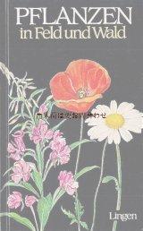 楽しい古本★  ボタニカル アート 牧場や野の植物  64 イラスト 図版