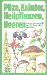楽しい古本★  ハーブ キノコ ベリーの本 図鑑 植物画  250点 イラスト多数