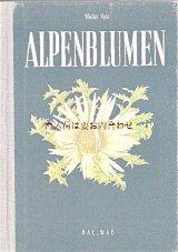 楽しい古本★  スイス 小さな高山植物図鑑 ボタニカル イラスト アルプスの植物