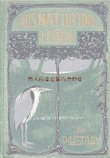 アンティーク★ 自然 動物 生物の本 自然科学 Dr. L.Staby  イラスト