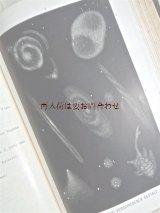 アンティーク大型書籍★送料込★宇宙 天文 一般天文学 惑星 星図 世界はこうして創られた