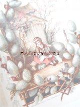 アンティーク洋書☆ 明るい日々より 花や水の精霊 カラーイラストの詩選集  Julius Höppner水彩画より ☆