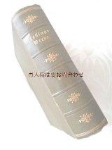 アンティーク洋書☆ 背表紙の模様の素敵な古書 レッシング作品集 イラスト有