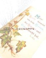 アンティーク洋書 ☆ 忘れな草の小さな本 クリスチャン 愛と友情のメモリアルブック 挿絵の素敵な古書  星と花柄