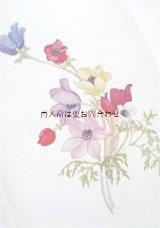 楽しい古本☆ 水彩植物画 ギリシャの花々 イラスト 詩 エッセイ 80年代