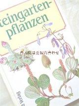 楽しい古本★ ロックガーデン 石の庭 植物画 イラスト多数  ボタニカル アート