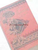 アンティーク洋書★ 薬草柄の赤い古書  ニコラウス•レーナウ 作品集