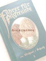 アンティーク キノコ図鑑  洋古書★ 幻想的なイラスト 可愛い図鑑  図版多数