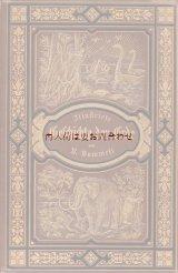 アンティーク☆ 希少 恐竜とマンモスの豪華表紙 地球の歴史 自然史 動植物 天文 太古の生物