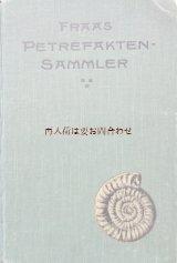アンティーク洋書★希少 オススメ 化石図鑑 ドイツ 化石採取のガイド 1910年