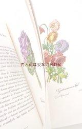 楽しい古本☆ 愛され贈られる花々の本 水彩 ボタニカル ブーケ イラスト 32枚 ルドゥーテ他
