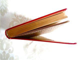 アンティーク洋書☆ 日記風赤い古書 詩集 カラーイラスト Julius Höppner水彩画 美本☆