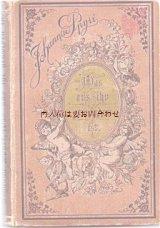 アンティーク洋書☆優しい天使と薔薇柄   ヨハンナ・シュピリ 小説