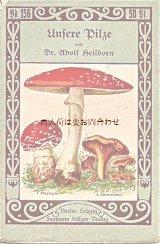 アンティーク紙もの☆ 食用キノコと毒キノコ 小冊子