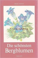楽しい古本★ 美しい 山のお花の本  ボタニカル アート  高山植物   カラー イラスト