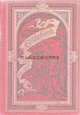 アンティーク洋書★ 豪華な赤い古書 歴史小説 エッケハルト 美背表紙 1902年