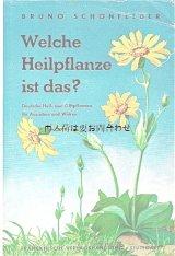 アンティーク洋書 ★ヒーリング植物と毒のある植物 図鑑 ナチュラルガイド