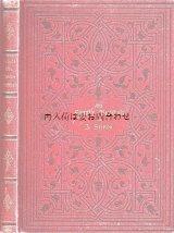 アンティーク洋書 ☆ 模様の素敵な小説 Die Familie Buchholz  1885年