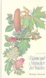 楽しい古本★ イラストページの素敵な図鑑 森の木と低木