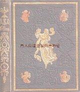 アンティーク洋書★ 豪華型押し模様の古書 レッシング 作品集(8) 1856年