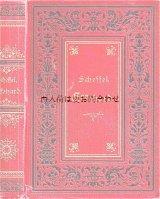 アンティーク洋書★ 素敵な背表紙の歴史小説 シェッフェル エッケハルト