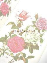 楽しい古本★  ボタニカル アート 植物 庭の花々や低木 ガーデン本 60年代