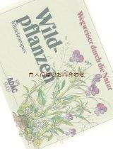 楽しい古本☆ 中央ヨーロッパの野草図鑑  自然 植物 ボタニカル イラスト多数