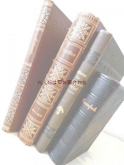 画像1: アンティーク洋書セット ディスプレイ  インテリア  撮影にも☆ 素敵な背表紙の古書他