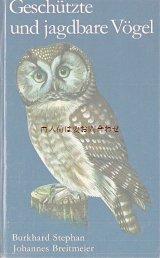 楽しい古本☆ 保護鳥と狩猟鳥の本 イラスト 図版 70年代