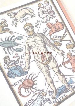 画像1: 楽しい古本☆ 医学 歴史と文化 薬学 リウマチ性疾患 イラスト多数