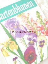 楽しい古本★ お庭の植物 イラスト 写真 図鑑  植物画  ボタニカル