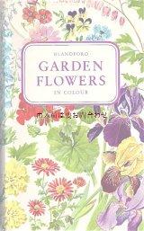 楽しい古本☆ カラフル イラストページ多数  ボタニカル 植物画  英語 ガーデン植物