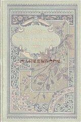 アンティーク洋書☆ 美表紙背表紙 花柄 植物モチーフの絵柄 小説