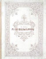 アンティーク洋書☆ アーダルベルト•シュタイファー 小説 装飾文字 イラスト