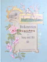 アンティーク洋書★ 小鳥•バラ•スミレ柄の美しい古書 物語