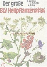 楽しい古本★ ヒーリング植物の大きな図鑑 ハーブ 薬草 大型書籍 図鑑