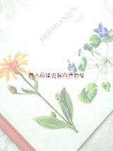 楽しい古本★ スイス 絵本のような図鑑 ヒーリング植物  薬草 ハーブの本 ボタニカル アート