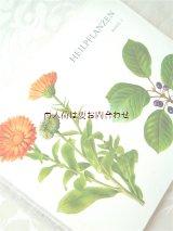 楽しい古本★ スイス 絵本のような図鑑 ヒーリング植物 薬草 ハーブの本 ボタニカル アート(2)