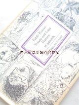 インゼル文庫 ☆ パブロ・ピカソ フランコの夢と嘘 反ファシズム的作品 お手頃