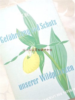 画像1: 楽しい古本★ 野生の植物 危険性と保護 モノクロ イラストページ多数 蘭 薬草 セイヨウキンバイソウ etc