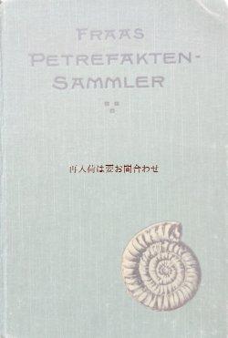 画像1: アンティーク洋書★希少 オススメ 化石図鑑 ドイツ 化石採取のガイド 1910年