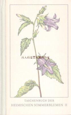 画像1: 楽しい古本 洋書★ ナチュラル  ヨーロッパ 夏の花の本  植物 図鑑 ボタニカル