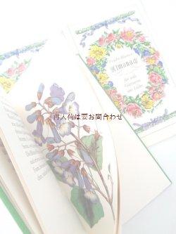 画像1: 楽しい古本☆ 愛のあるガーデナーの為の植物帳 ボタニカル イラスト 図鑑  植物画