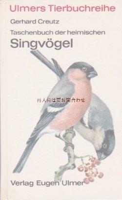 画像1: 楽しい古本 洋書★   ナチュラル    60年代  小鳥  鳴鳥の本   イラスト  多数