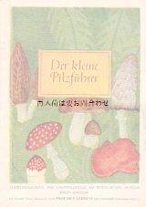 楽しい古本☆ ほのぼの 可愛い キノコの小冊子  小さなきのこの本 植物ミュージアム